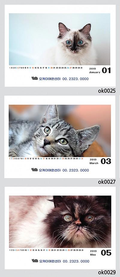 고양이(250*190)100부