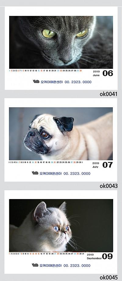 강아지,고양이          (250*190)100부