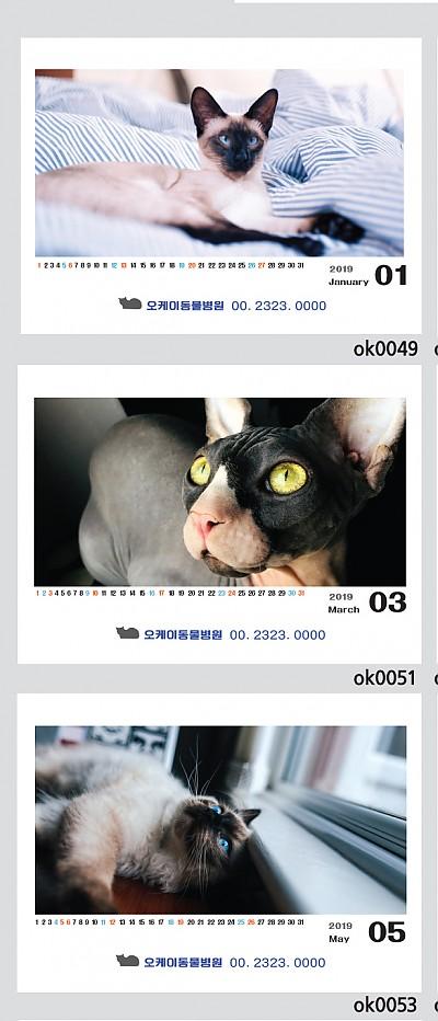 고양이둘 (250*190)100부